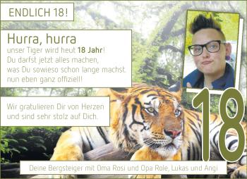 Anzeige Tiger