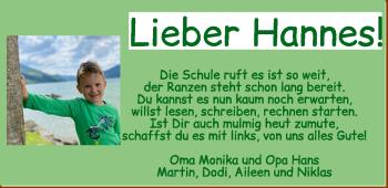 Anzeige Hannes